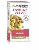 Arkogélules Lécithine De Soja Caps Fl/45 à BORDEAUX