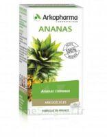 Arkogélules Ananas Gélules Fl/45 à BORDEAUX
