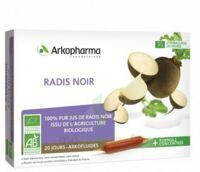 Arkofluide Bio Ultraextract Radis Noir Solution Buvable 20 Ampoules/10ml à BORDEAUX