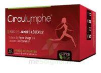 Santé Verte Circulymphe Triple Actions B/30 à BORDEAUX