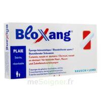 Bloxang Eponge De Gélatine Stérile Hémostatique B/5 à BORDEAUX